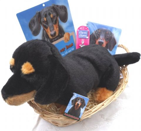 DACHSHUND GIFT WRAPPED BASKET HAMPER WITH DAXIE COLLECTIBLES & SOFT TOY DOG